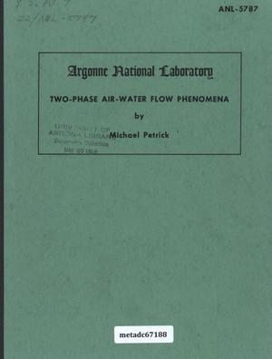 Primary view of object titled 'Two-Phase Air-Water Flow Phenomena'.