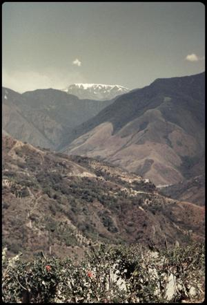 Primary view of object titled 'View from hotel - Yungas'.