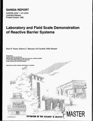 Primary view of object titled 'Laboratory and field scale demonstration of reactive barrier systems'.