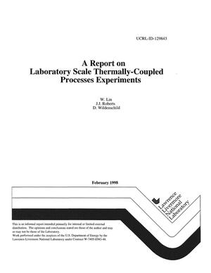 Primary view of object titled 'Report on laboratory scale thermally-coupled processes experiments'.