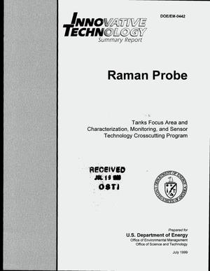 Primary view of object titled 'Raman probe. Innovative technology summary report'.