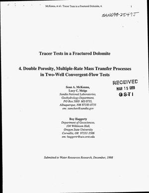 Primary view of object titled 'Tracer Tests in a Fractured Dolomite: 4. Double Porosity, Multiple-Rate Mass Transfer Processes in Two-Well Convergent Flow Tests'.