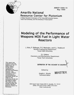 Primary view of object titled 'Modeling of the performance of weapons MOX fuel in light water reactors'.