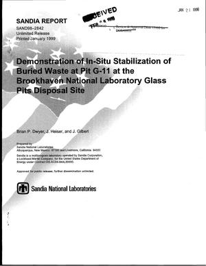 Primary view of object titled 'Demonstration of In-Situ Stabilization of Buried Waste at Pit G-11 at the Brookhaven National laboratory Glass Pits Disposal Site'.