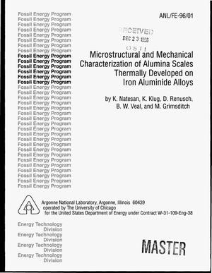 Primary view of object titled 'Microstructural and mechanical characterization of alumina scales thermally developed on iron aluminide alloys'.