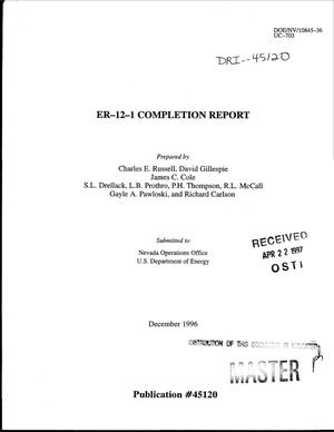 Primary view of object titled 'ER-12-1 completion report'.
