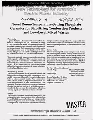 Primary view of object titled 'Novel room-temperature-setting phosphate ceramics for stabilizing combustion products and low-level mixed wastes'.