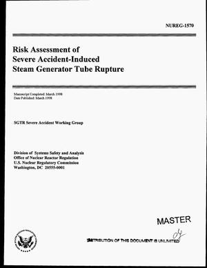 Primary view of object titled 'Risk assessment of severe accident-induced steam generator tube rupture'.