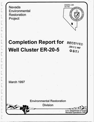 Primary view of object titled 'Completion report for Well Cluster ER-20-5'.