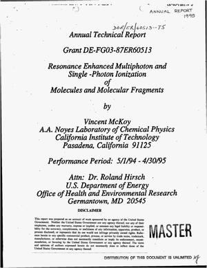 Primary view of object titled 'Resonance enhanced multiphoton and single-photon ionization of molecules and molecular fragments. Annual technical report, May 1, 1994--April 30, 1995'.