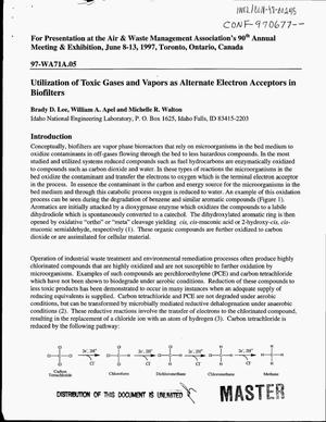 Primary view of object titled 'Utilization of toxic and vapors as alternate electron acceptors in biofilters'.