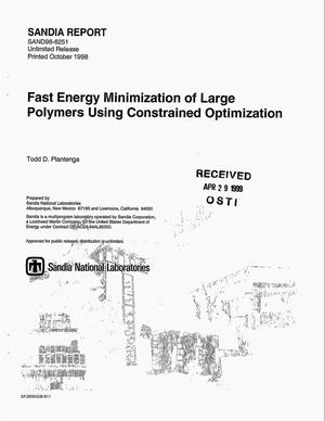 Primary view of object titled 'Fast Energy Minimization of large Polymers Using Constrained Optimization'.