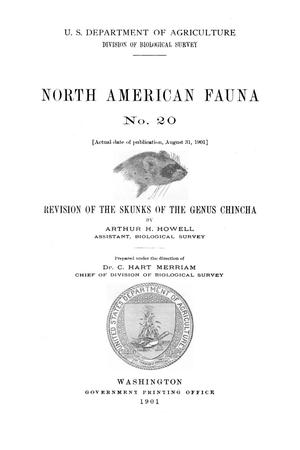 Primary view of Revision of the Skunks of the Genus Chincha