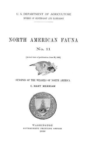 Primary view of object titled 'Synopsis of the Weasels of North America'.
