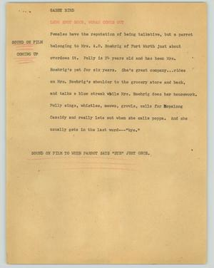Primary view of object titled '[News Script: Gabby bird]'.