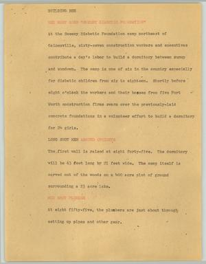 Primary view of object titled '[News Script: Building bee]'.