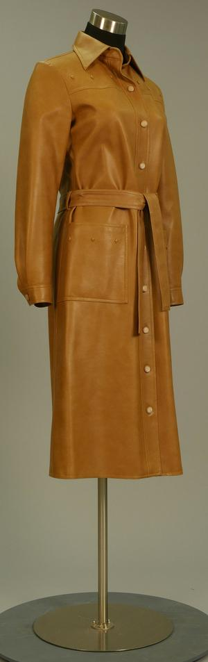 Primary view of object titled 'Trench Coat'.
