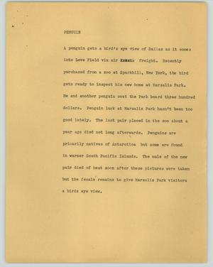 Primary view of object titled '[News Script: Penguin]'.