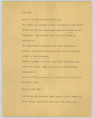 Primary view of object titled '[News Script: Lion cubs]'.