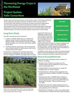 Primary view of object titled 'Pioneering energy crops in the Northeast, project update: Salix Consortium'.
