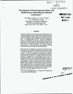 Primary view of object titled 'Prioritization of environmental, safety, and health issues at Brookhaven National Laboratory'.