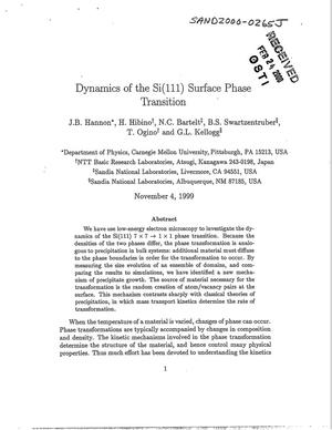 Primary view of object titled 'Dynamics of the Si(111) surface phase transition'.