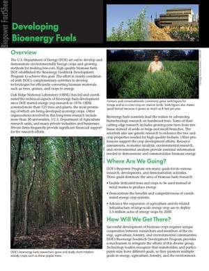 Primary view of object titled 'Developing bioenergy fuels: Biopower fact sheet'.