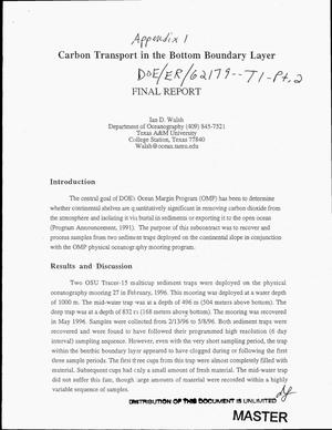 Primary view of object titled 'Carbon transport in the bottom boundary layer. Final report'.