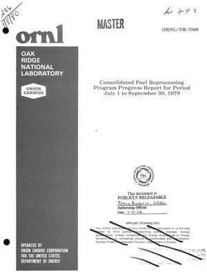 Primary view of object titled 'Consolidated fuel reprocessing program. Progress report, July 1-September 30, 1979'.