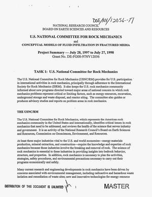 Primary view of object titled 'U.S. National Committee for Rock Mechanics; and Conceptual model of fluid infiltration in fractured media. Project summary, July 28, 1997--July 27, 1998'.