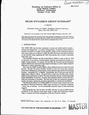 Primary view of object titled 'Beam dynamics group summary'.