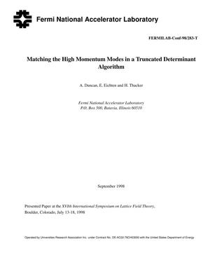 Primary view of object titled 'Matching the high momentum modes in a truncated determinant algorithm'.