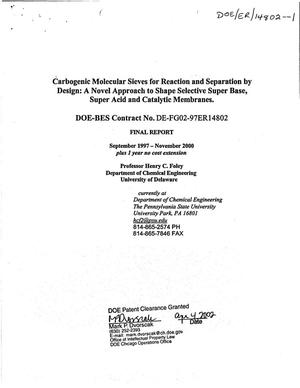 Primary view of object titled 'Carbogenic molecular sieves for reaction and separation by design: A novel approach to shape selective super base, super acid and catalytic membranes. Final report'.