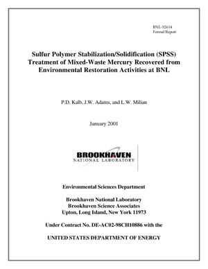 Primary view of object titled 'Sulfur polymer stabilization/solidification (SPSS) treatment of mixed waste mercury recovered from environmental restoration activities at BNL'.