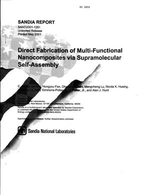 Primary view of object titled 'Direct Fabrication of Multi-Functional Nanocomposites via Supramolecular Self-Assembly'.