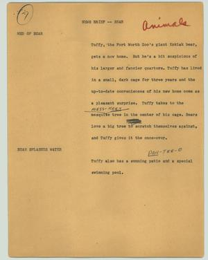 Primary view of object titled '[News Script: News brief (bear)]'.