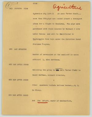 Primary view of object titled '[News Script: Pigs]'.
