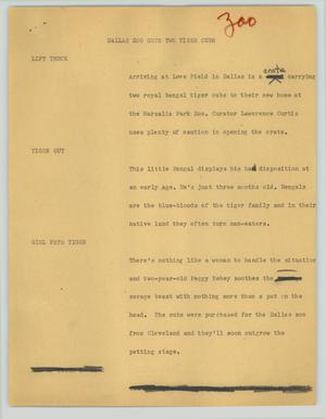 Primary view of object titled '[News Script: Dallas zoo gets two tiger cubs]'.