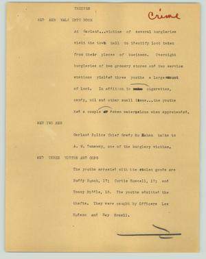 Primary view of object titled '[News Script: Thieves]'.