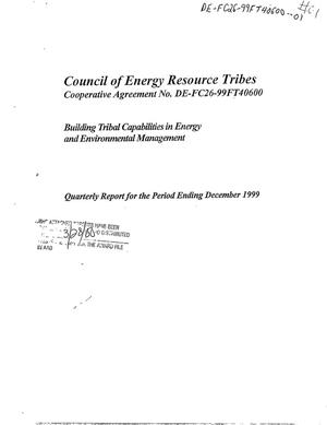 Primary view of object titled 'BUILDING TRIBAL CAPABILITIES IN ENERGY AND ENVIRONMENTAL MANAGEMENT'.
