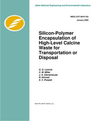 Primary view of object titled 'Silicon-Polymer Encapsulation of High-Level Calcine Waste for Transportation or Disposal'.