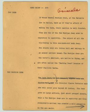 Primary view of object titled '[News Script: News brief -- zoo]'.