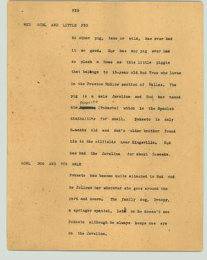 Primary view of object titled '[News Script: Pig]'.