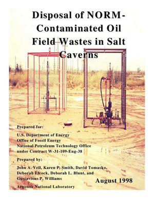 Primary view of object titled 'Disposal of NORM-contaminated oil field wastes in Salt Caverns.'.