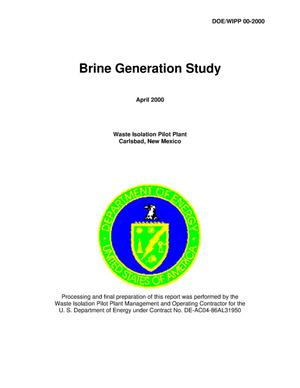 Primary view of object titled 'Brine Generation Study'.