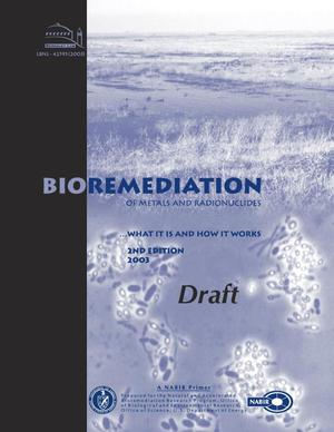 Primary view of object titled 'Bioremediation of Metals and Radionuclides: What It Is and How It Works (2nd Edition)'.