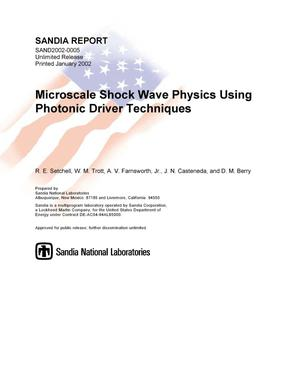 Primary view of object titled 'Microscale Shock Wave Physics Using Photonic Driver Techniques'.