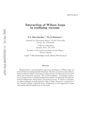 Primary view of object titled 'Interaction of Wilson loops in the confining vacuum'.