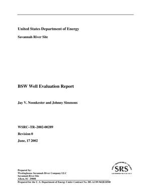 Primary view of object titled 'BSW Well Evaluation Report'.