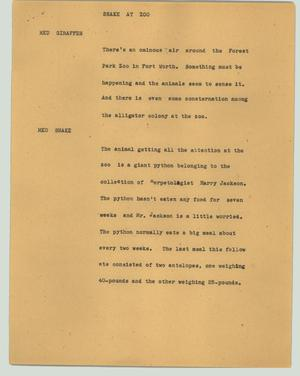 Primary view of object titled '[News Script: Snake at zoo]'.